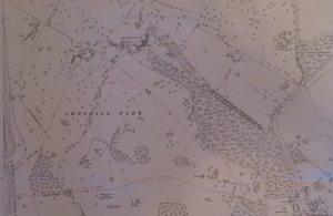 Map of Ampthill Park (1924)
